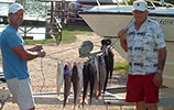 Ray Williamson.  Striped Bass Fishing Guide Service.  Lake Buchanan.  Striped bass, striper, fisherman, fishing for stripers. Highland Lakes Texas, Lake Buchanan, catch stripers, fishing for bass, bass fishing, good catch, happy fishing.